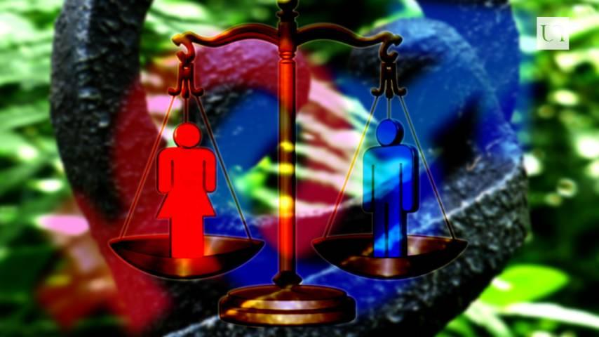 Femmes de loi speed dating